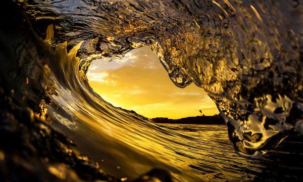 California Gold - Fine Art Photography