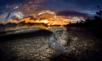 Sun Burst by Sean Hunter Brown